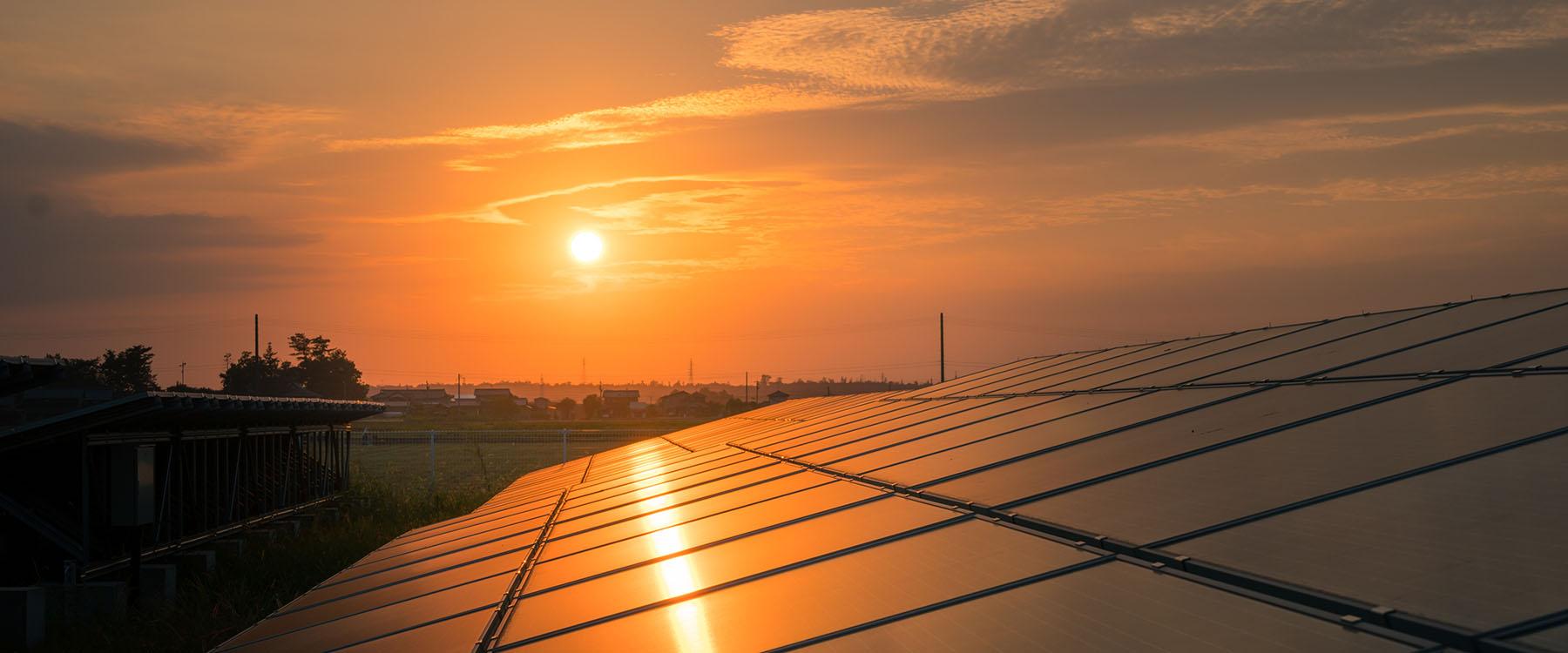 solar-farm-sunset